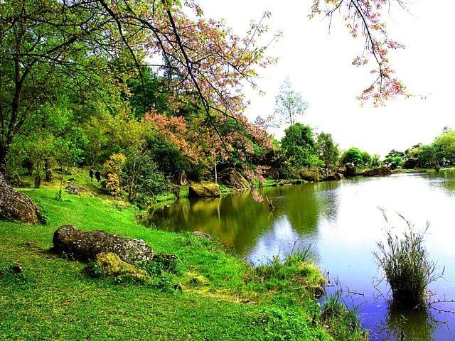 Serene lake. Image courtesy of pexels.com