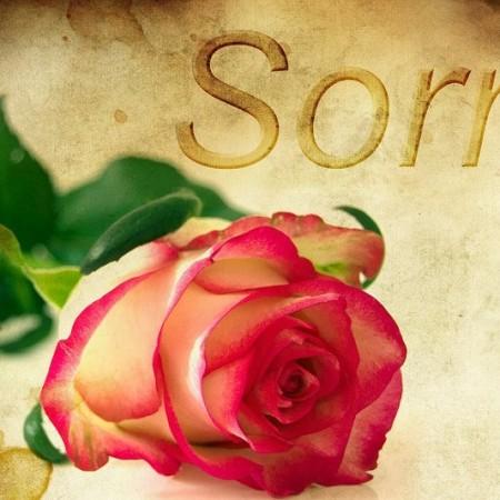 Sorry. Image courtesy of pixabay.com